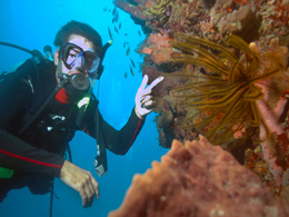 Fish ID Dive - That is a Cridoid